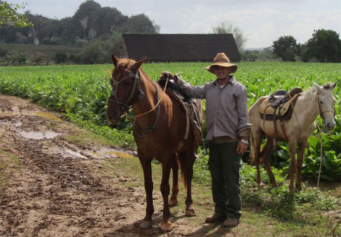 Kubanische Zigarren - Tabakbauer in Vinales-Tal