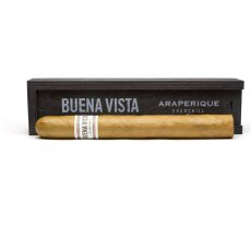 Buena Vista Churchill