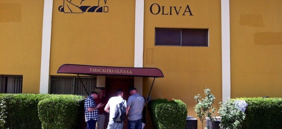 Tabacalera Oliva Cigars