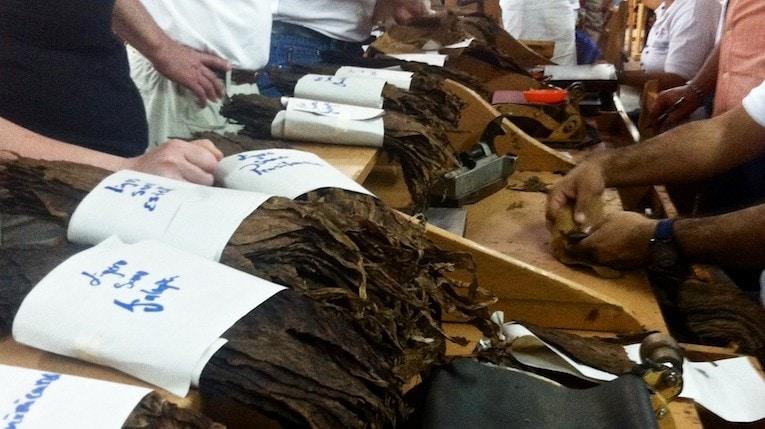 Tabake für das Zigarrenblending