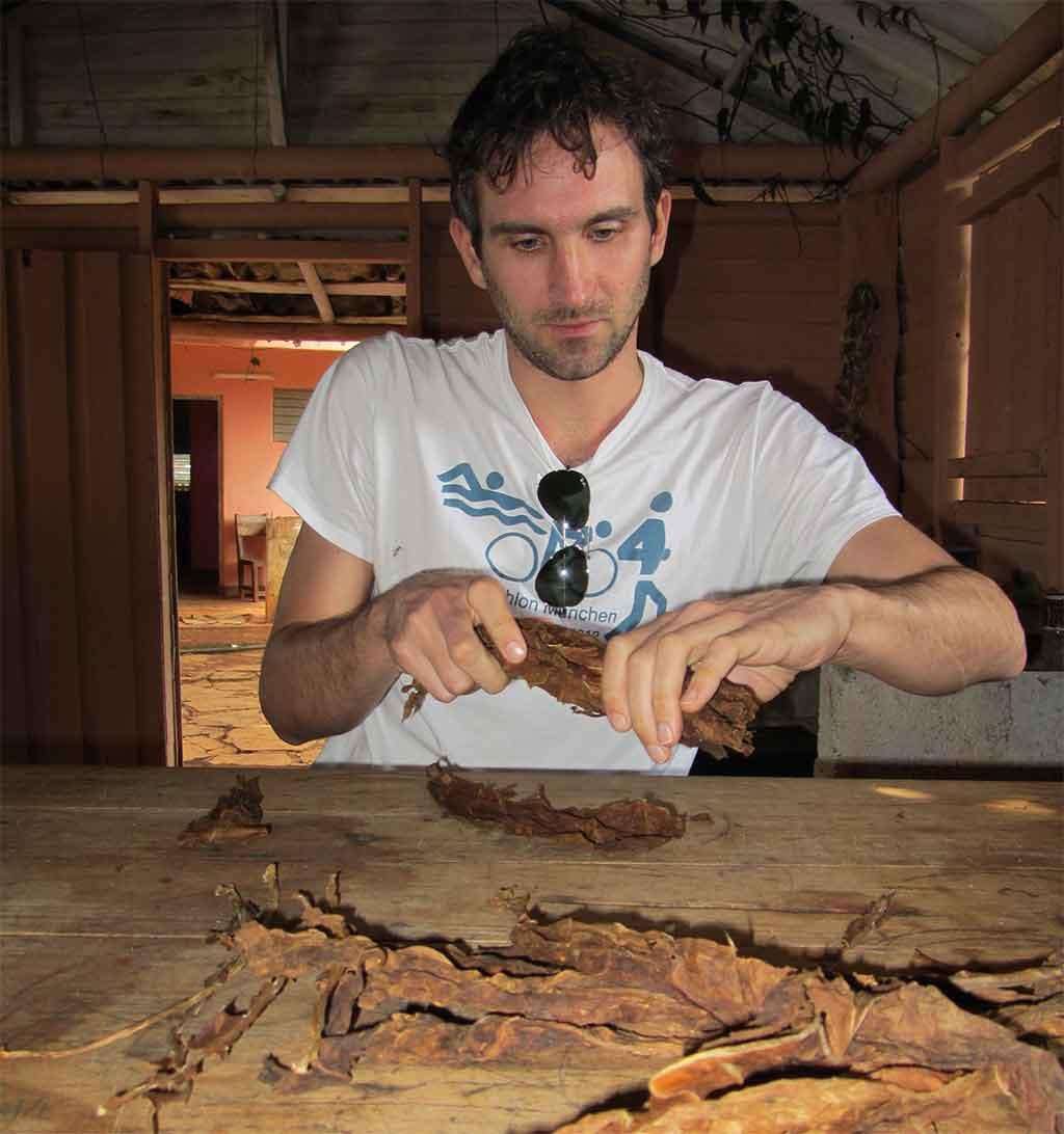 Kubanische Zigarren Einlage