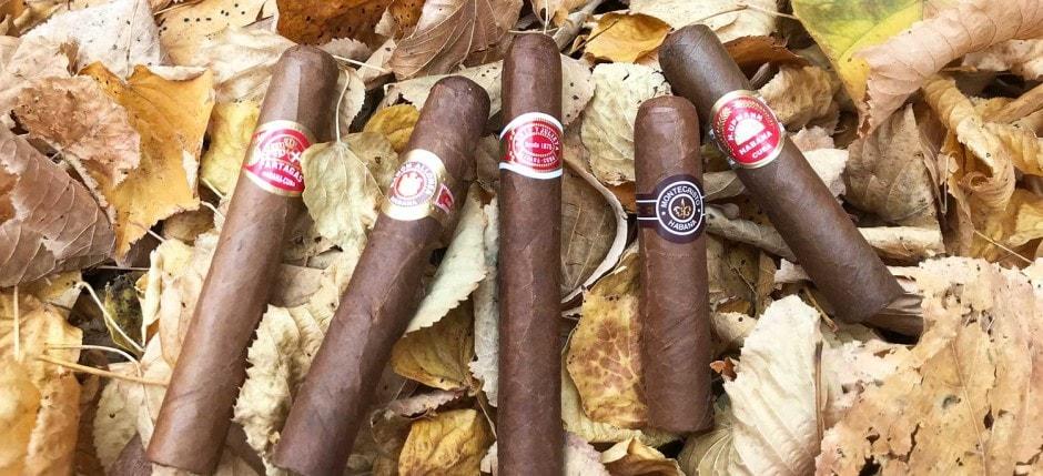 Kubanische Zigarren Kleinformate