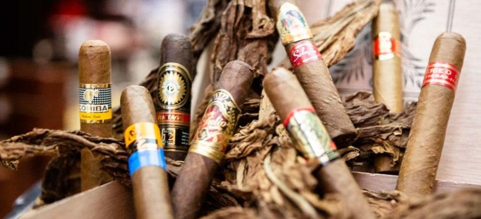 Robusto Zigarren